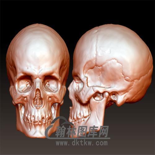 骷髅头圆雕立体圆雕图(YZH-042)